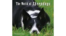 The World of Sheepdogs by Angie Driscoll