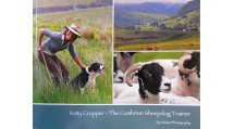 The Cumbrian Sheepdog Trainer
