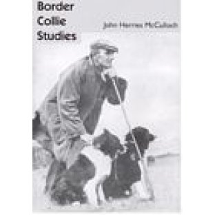 Border Collie Studies by John Herries McCulloch
