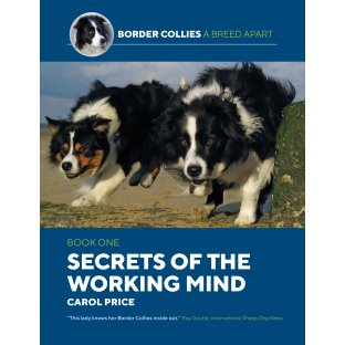 Secrets of the Working Mind by Carol Price