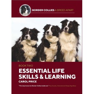 Essential Life Skills & Learning by Carol Price