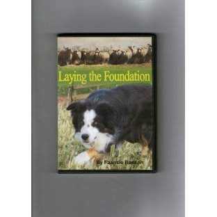 Laying the Foundation DVD