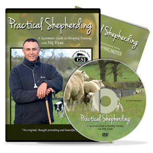 Practical Shepherding by Nij Vyas