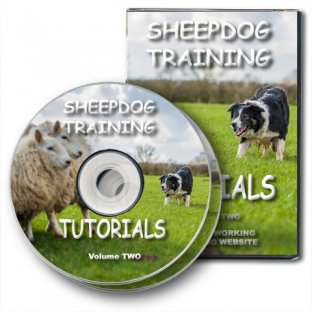 Sheepdog Training Tutorials - Vol 2
